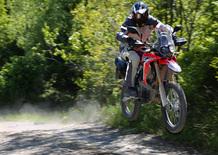 Honda CRF 250 Rally. Il test della baby da rally