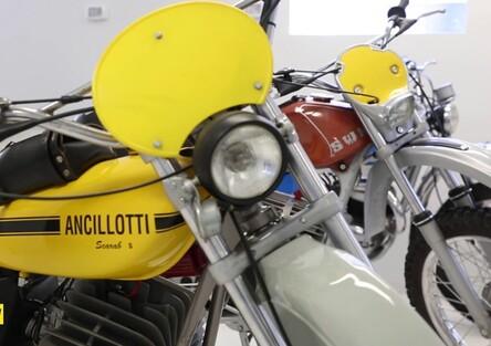 Vittorio Radice e la sua collezione artigliata
