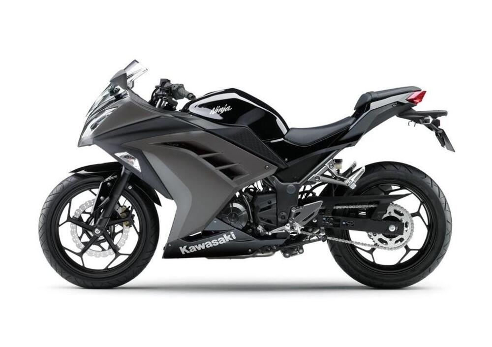 Kawasaki Ninja 300 (2012 - 14) (2)